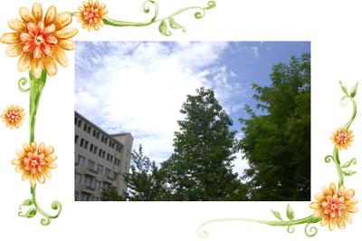 Flower0416_2